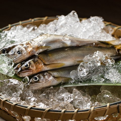 荒川養殖漁業生産組合