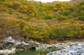 日光 鬼怒川ではエリアにより奥日光の10月上旬から、鬼怒川温泉では11月中旬頃まで紅葉を楽しめます。