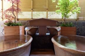 貸切風呂付き、お食事はブッフェで好きなものを