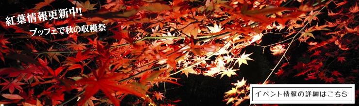 秋の収穫祭 サーモン祭り <ブッフェ>