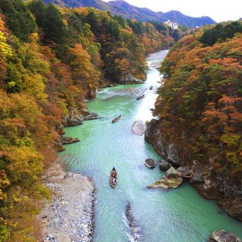 【2021】日光鬼怒川の紅葉
